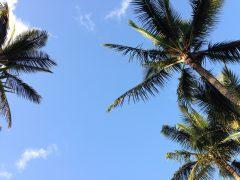 ハワイ旅行の費用と予算まとめ!合計でいくらになるの?