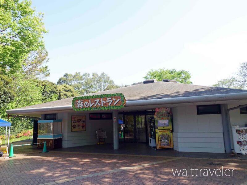 千葉市動物公園 森のレストラン