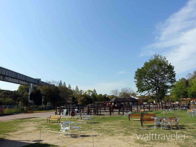 千葉市動物公園 ふれあい動物の里