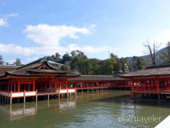 広島日帰り旅行 厳島神社 宮島