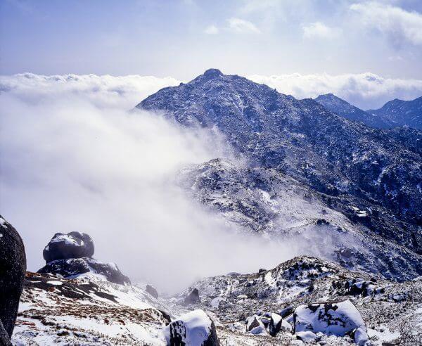 屋久島 旅行 自然 ベストシーズン