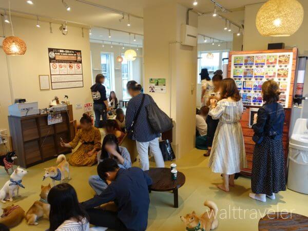 鎌倉 豆柴カフェ