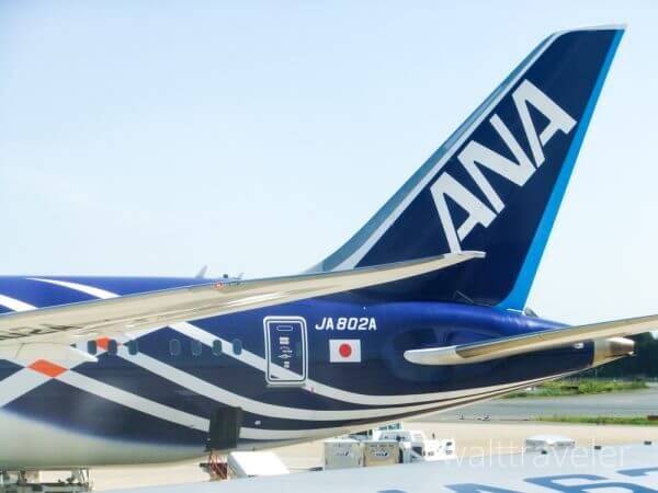 ANA 全日空 成田空港 JA802A 旅行 インドネシア シンガポール