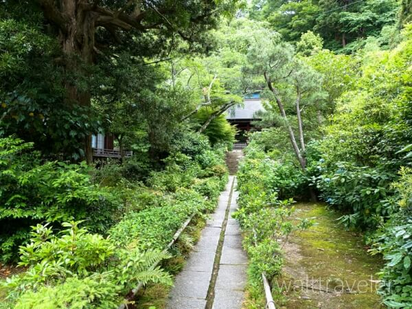 鎌倉 妙法寺 苔寺