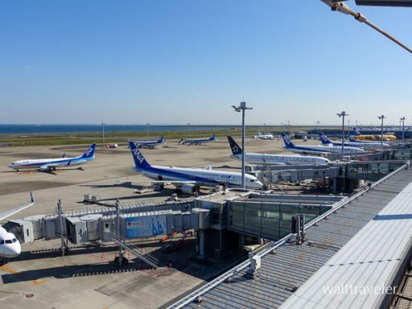 沖縄旅行 ANA 羽田空港
